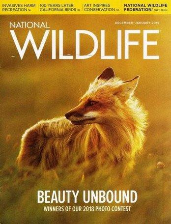 National Wildlife Magazine